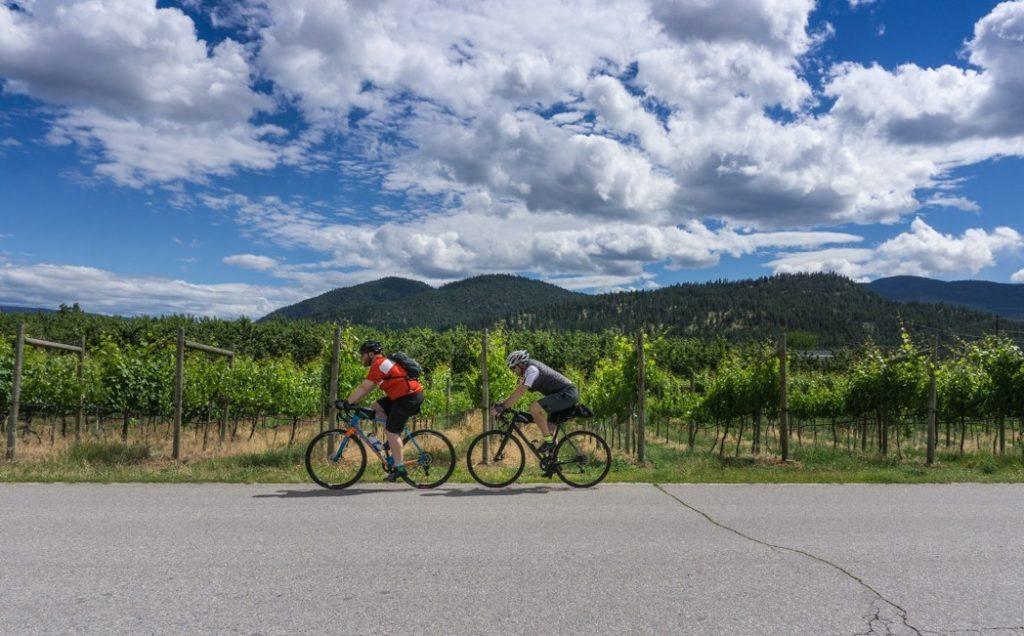 Summerlands Wineries, California