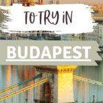 Trendy Budapest Wine Bars | Best Wine Bars Budapest | Hungary Wine Bars | Best Place to Wine Taste in Handy | Wine Trip to Budapest | History of Budapest Wine | #wine #budapest #hungary #redwine #varietal