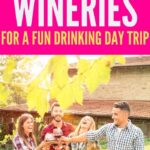 Wineries Near London | English Countryside Wineries | London Wineries | British Wineries | English Wineries | Where to go Wine Tasting in London | #London #wine #wineries #winetour