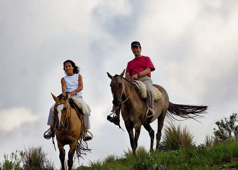Afton Mountain| Horseback Riding AND Wine Tasting