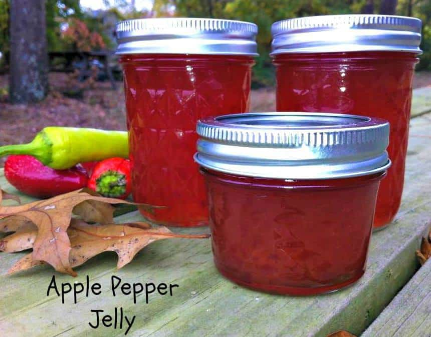 Delicious Jelly Recipes For Your Cheese Board - Apple Pepper Jelly Recipe