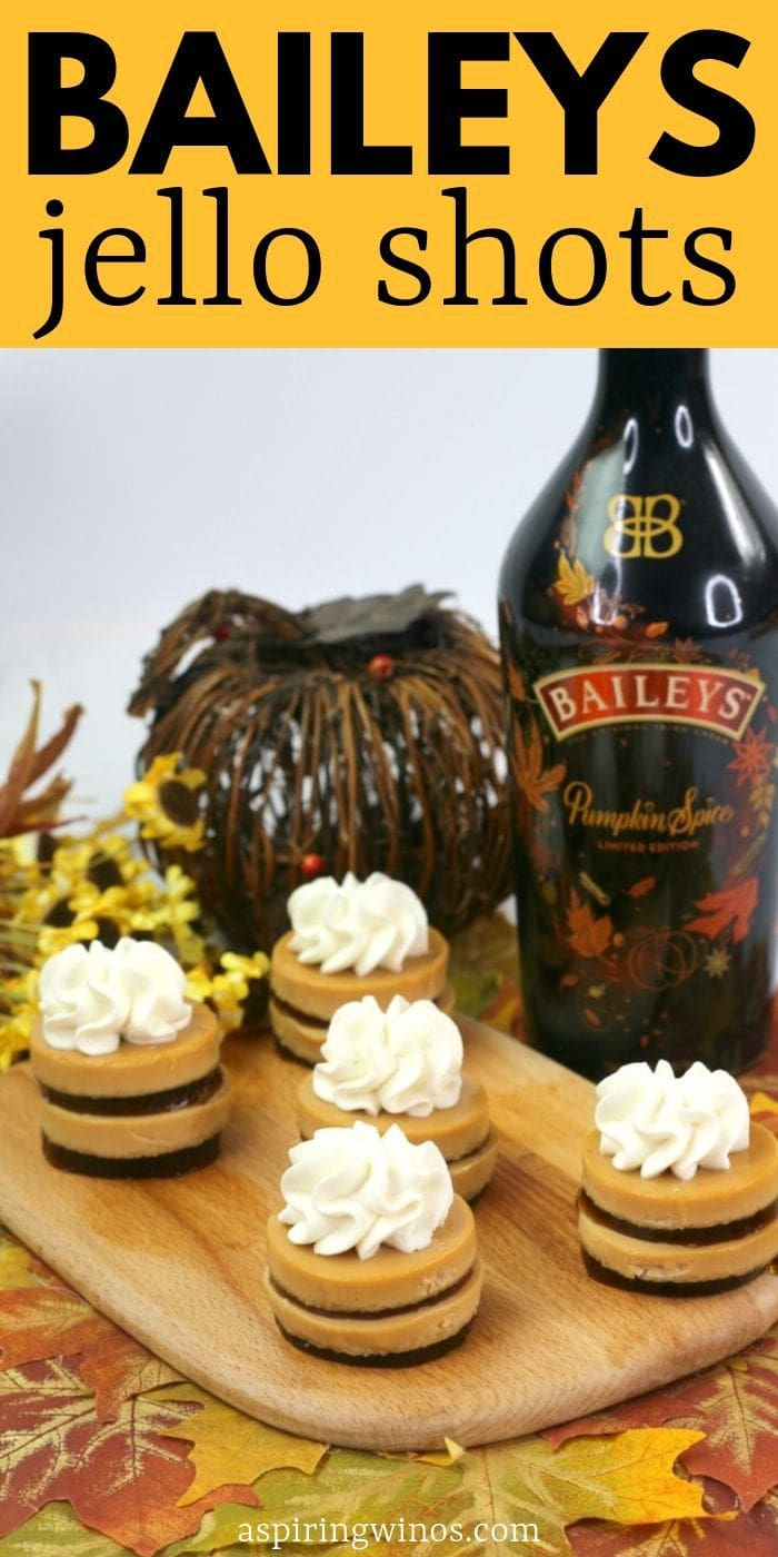 Baileys Jello Shots | Baileys Jello Shots Recipe | Jello Shots | Chocolate Jello Shots | Alcoholic Snacks for St. Patrick's Day. Fun ideas for Bachelorette parties Creative types of Jello shots | #jelloshots #baileys #party