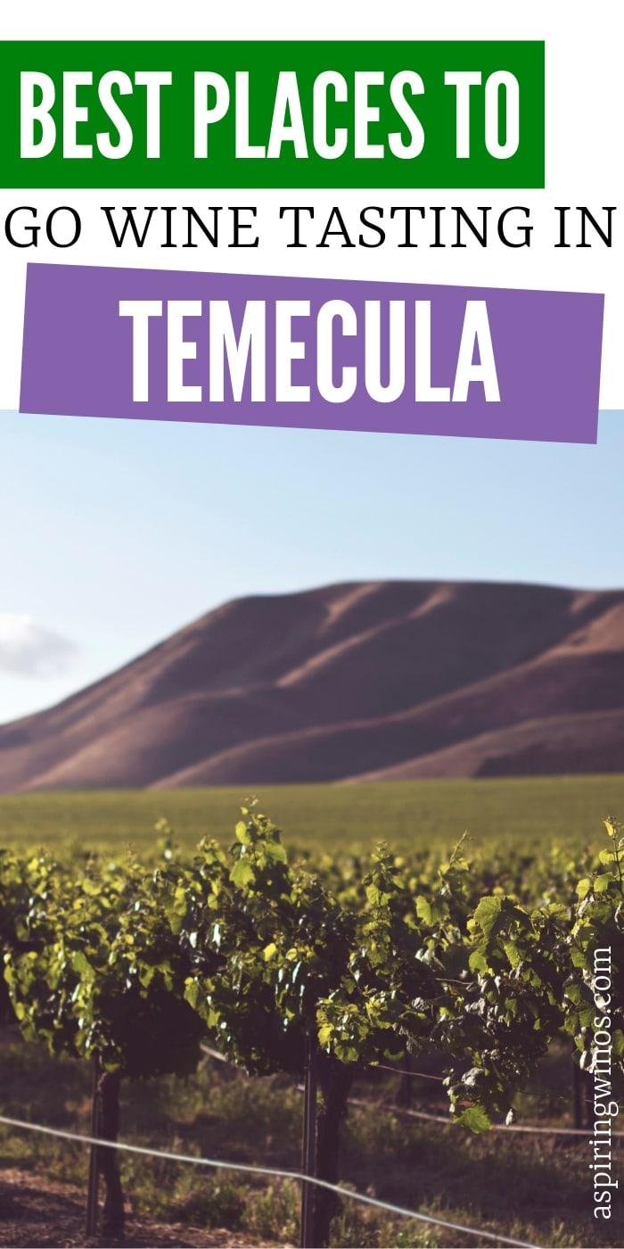 Where to Go Wine Tasting in Temecula | Wine Tasting in California | Wine Tasting in Temecula, California | Temecula Wine Tasting | Best Wine Tasting in Temecula | Wine Tasting Tour | Wine Tasting | #winetasting #wine #california #temecula #travel #winetravel