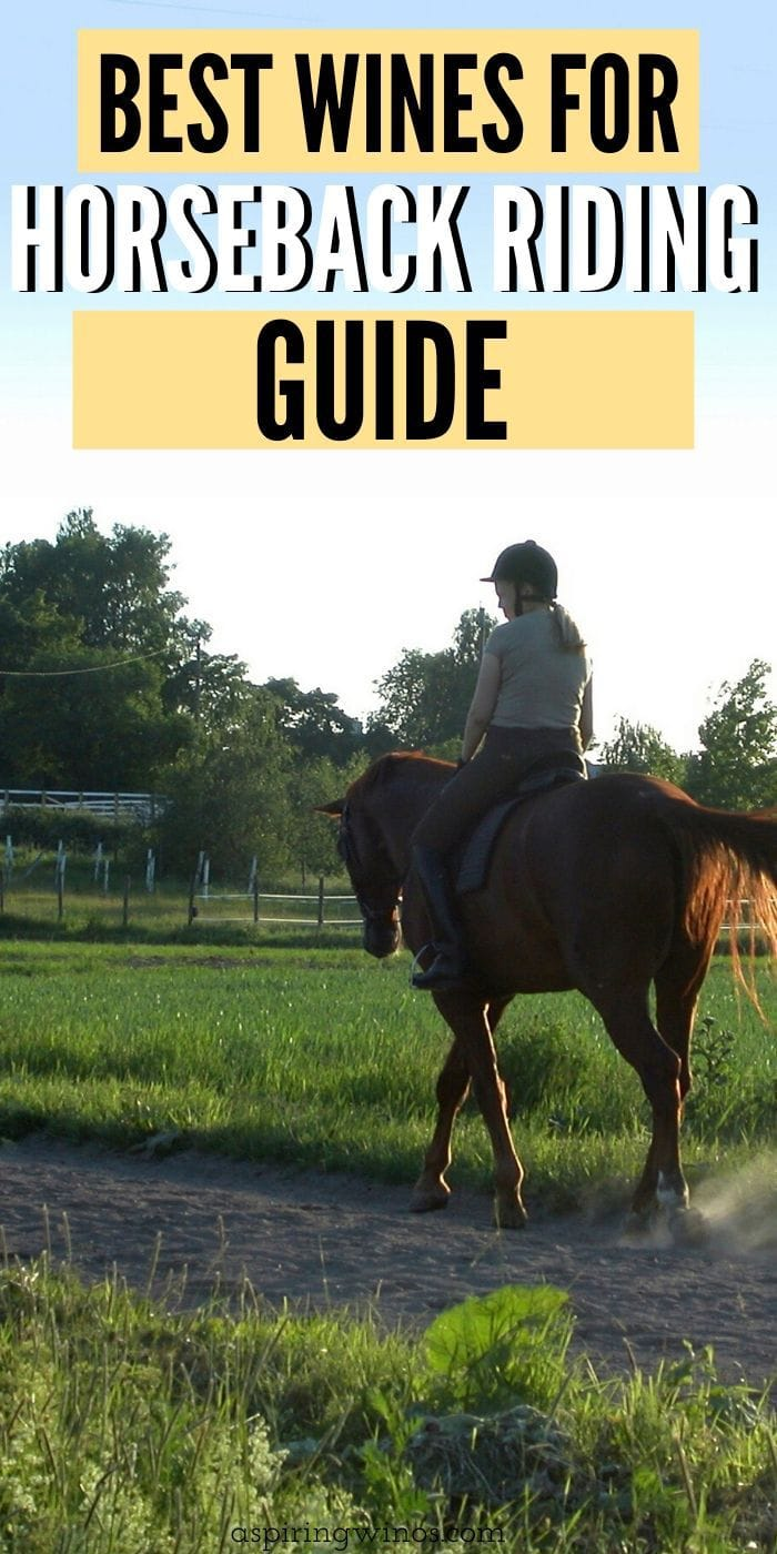 Best Wines to Take Horseback Riding | Wine and Horseback Riding | Can I drink Wine While Horseback Riding | Drinking and Riding a Horse | What Wines to Take Horseback Riding | #wine #horsebackriding #wineandhorses #fun