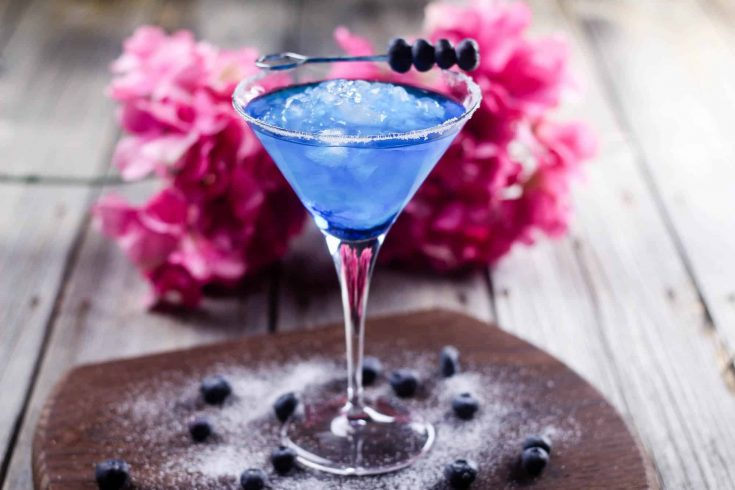This Blueberry Margarita Cocktail is Beautiful