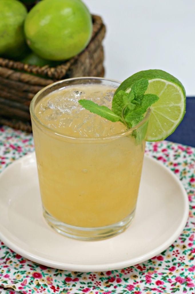 Cantaloupe Tequila Spritzer