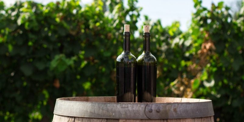 Wine Weekend Destinations Within 5 Hours of NYC | Wine Destinations Near NYC | Weekend Wine Trip Near NYC | Wineries within 5 Hours of NYC | Weekend Trip | #destinations #wine #NYC