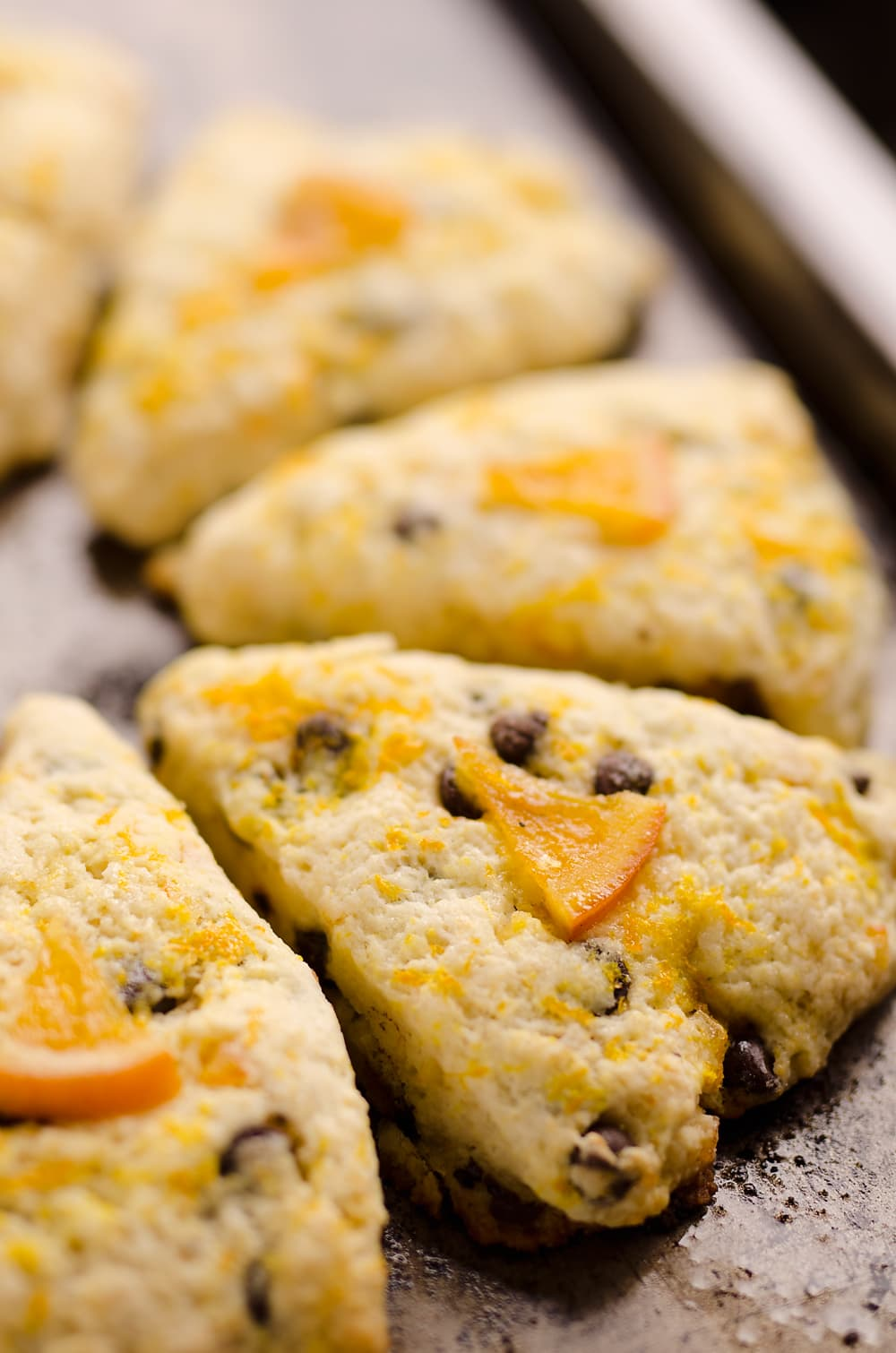 Dark Chocolate and Orange Scones