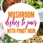 Must-Make Mushroom Recipes for Your Next Wine Tasting Party | #mushroom recipes | This is exactly how to pair food with pinot noir, a delightful red wine that develops mushroom and vegetal notes with age. Pinot Noir pairings can accentuate the aged characteristics. Pinot is a delicate wine that can be easily overpowered by food. #pinotnoir | #winepairing #recipes #winetasting #party