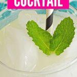 Bourbon Lemonade Cocktail | Spiked Lemonade | Lemonade Cocktail Bourbon and Lemon Cocktail | Best Lemonade Cocktail | #cocktail #bourbon #lemonadecocktail #spikedlemonade