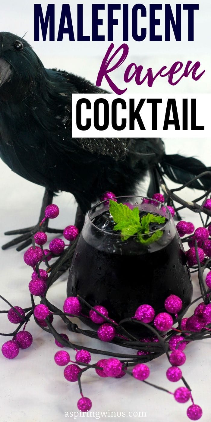 Maleficent Raven Cocktail | Halloween Cocktails | Black Cocktails | Cocktail from Maleficent | #maleficent #cocktail #raven #blackcocktail