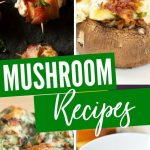 Mushroom Appetizer Recipes | Wine Tasting Appetizers | Mushroom and Wine Pairings | Mushroom Recipes | Appetizers for Wine Night | #mushrooms #winetasting #wine #appetizers #recipes