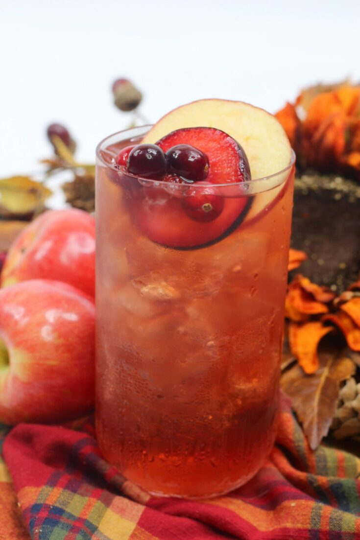 Plum Apple Spiced Toddy