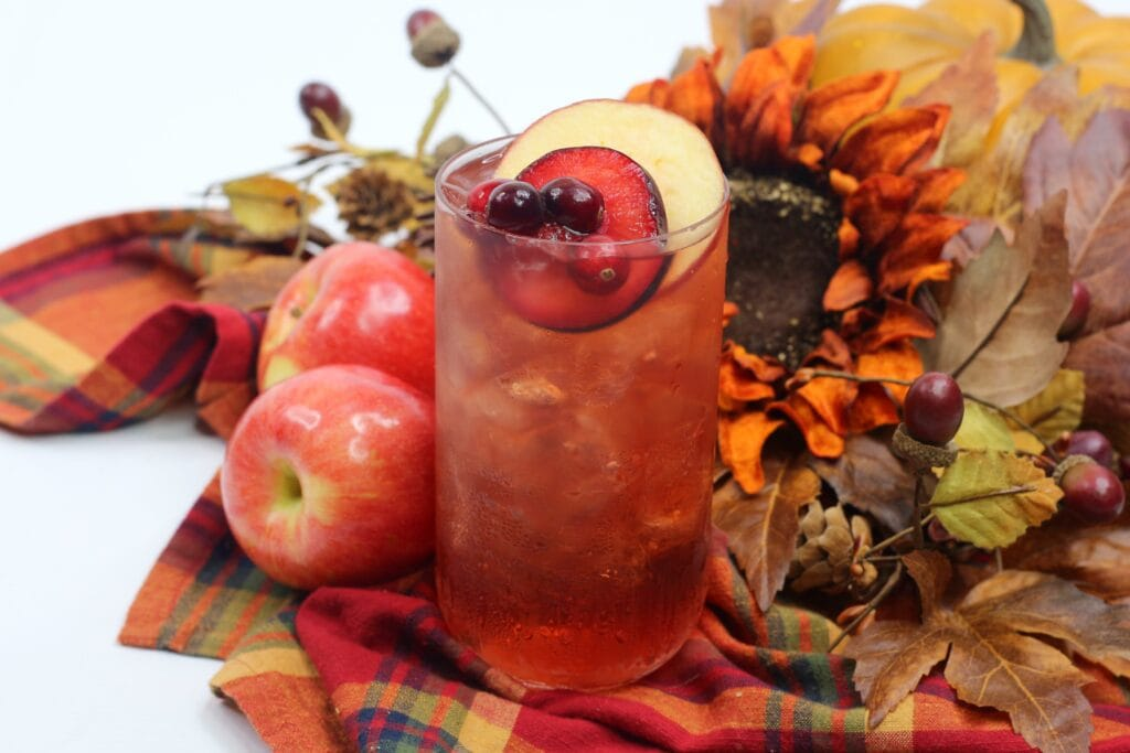 apple plum toddy iced fall cocktail recipe