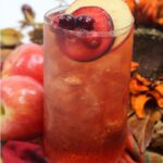 Plum Cocktail | Apple Flavored Fall Cocktail | Fall Themed Drinks | Holiday Cocktail Recipes | Cocktails to go With Holiday Dinner | Hot Toddy Recipes | Icd Toddy Recipes | #toddy #rum #whiskey #crown #cocktail