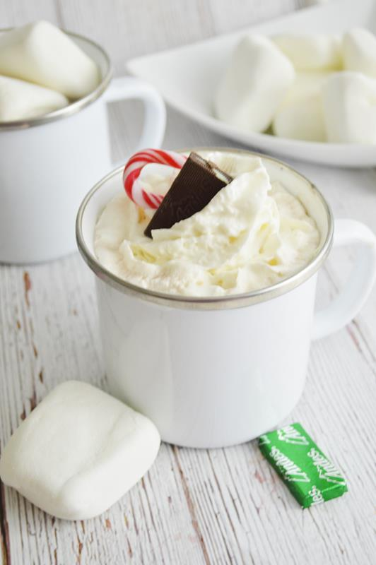andes peppermint hot chocolate booze alcohol drink
