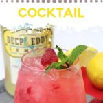 Delicious Raspberry Cocktails   Frozen Raspberry Cocktail   The Best Cocktails for Summer   Chilled Cocktails   Fruit Cocktails   Raspberry Flavored Drinks   Red Cocktails   Cocktail Recipes   #recipes #cocktails #raspberry #summer #drinks