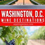 Weekend Wine GEtaways | Wine Country Trips | Wine Country Ideas | Wine Country Camping | Washington DC Wine Scene | Washington Wine | Wine Country Washington DC | DC Wine | #wine #DC #winecountry #winetravel #travel