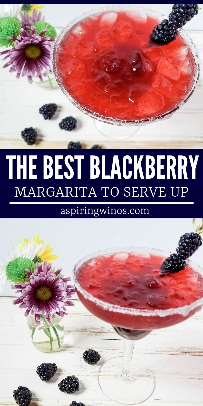 Blackberry Margarita Recipe | The Best Margarita | Best Blackberry Margarita| National Margarita Day | Quick and Easy Blackberry Margarita | #margarita #cocktails #recipe #blackberrymargarita #nationalmargaritaday