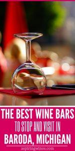Wine Bars to Try in Baroda