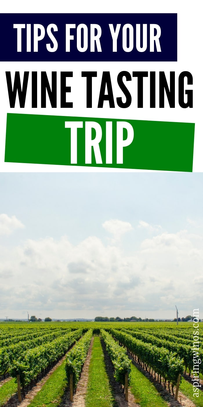 How to Make Your Wine Trip Unforgettable | How to have an amazing winery trip | Planning tips and tricks for wine tours | The things you really need to know in order to go wine tasting like a professional. #wine #travel #winetasting