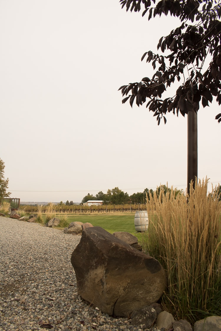 All of the gorgeous grounds are around the winery and restaurant, which is a converted home.