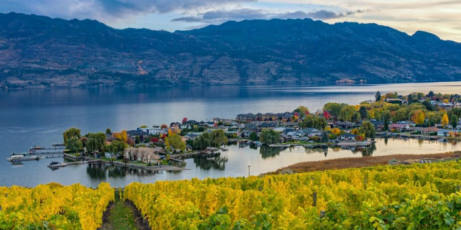 Picking a Wine Tour in Kelowna