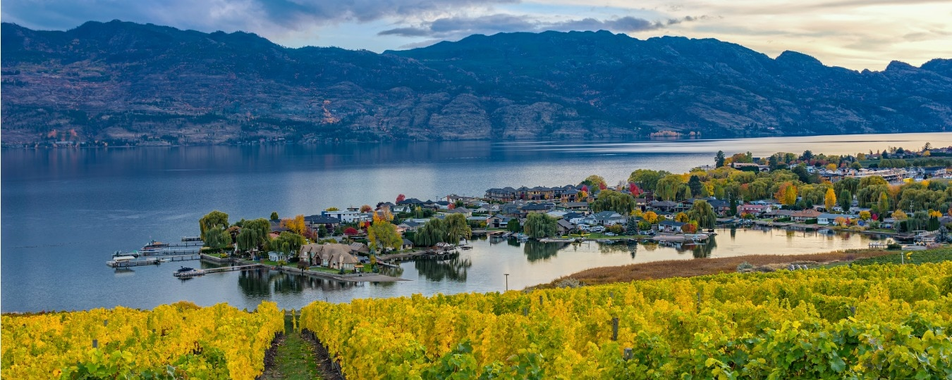 Uncorked Wine Tours in Kelowna -