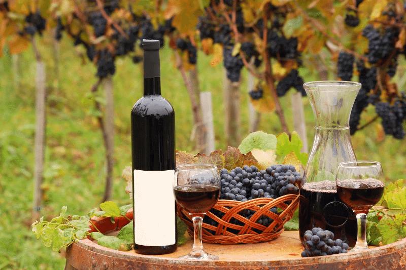 Van Ruiten family wienry grapes next to wine