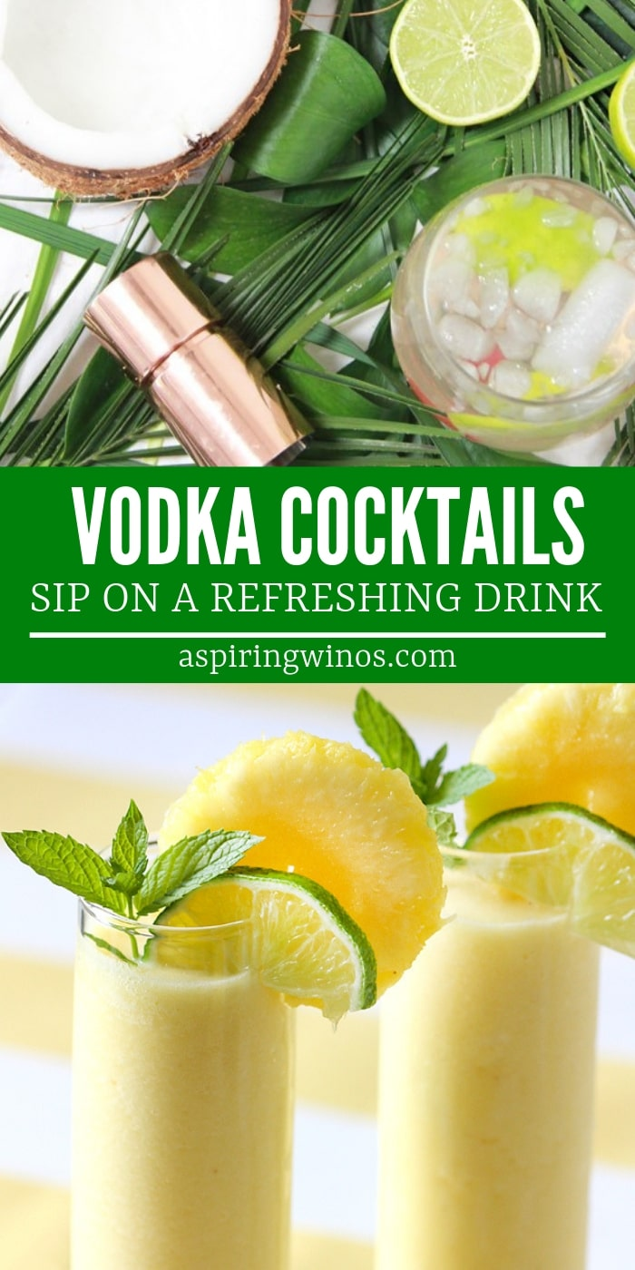 Vodka Cocktails | Vodka Recipes | Winter Vodka Cocktails | Summer Vodka Cocktails | Vodka Cocktails for a Crowd | Easy Vodka Cocktails | Simple Cocktails | #cocktails #recipes #vodkadrinks #vodkacocktail