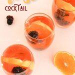 Rose Cocktail | Vodka Sangria | Blackberry Cocktail | Fruit Cocktail | Summer Cocktail | Spring Drink Recipe | Vodka Rose Cocktail Recipe | #vodka #rose #wine #sangria #cocktail