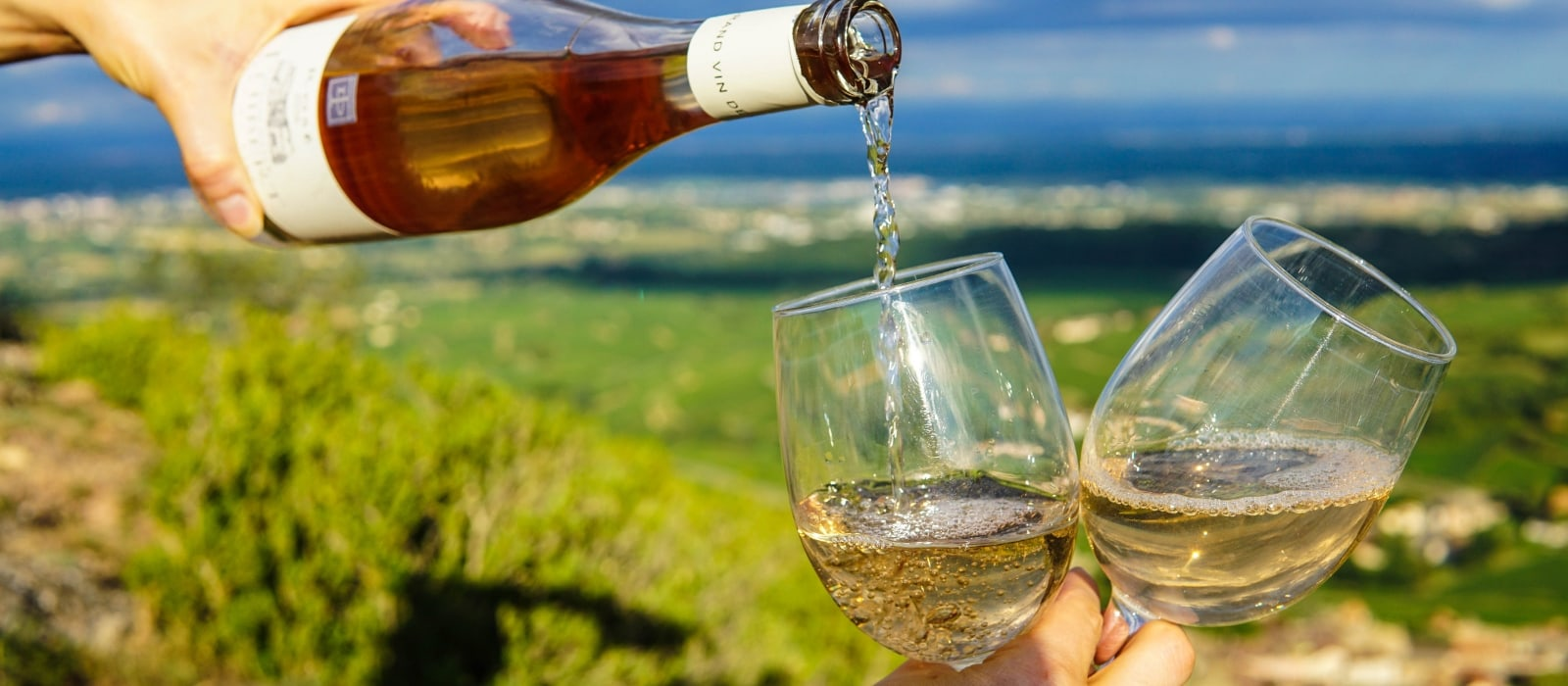 Where to Go Wine Tasting in Temecula| Wine Tasting in California| Wine Tasting in Temecula, California| Temecula Wine Tasting| Best Wine Tasting in Temecula| Wine Tasting Tour| Wine Tasting| #winetasting #wine #california #temecula #travel #winetravel