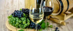 Where to go wine tasting in Lodi