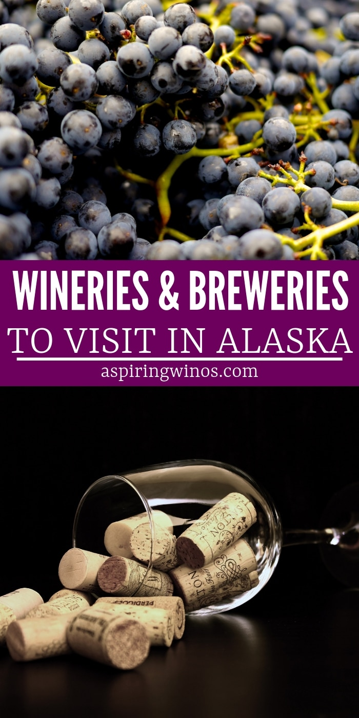 Wineries & Breweries to Visit in Alaska | Places to Visit in Alaska | Best Wineries and Breweries in Alaska | Wine and Beer travel | Where to Drink Wine and Beer in Alaska | #wine #wineries #breweries #beer #alaska
