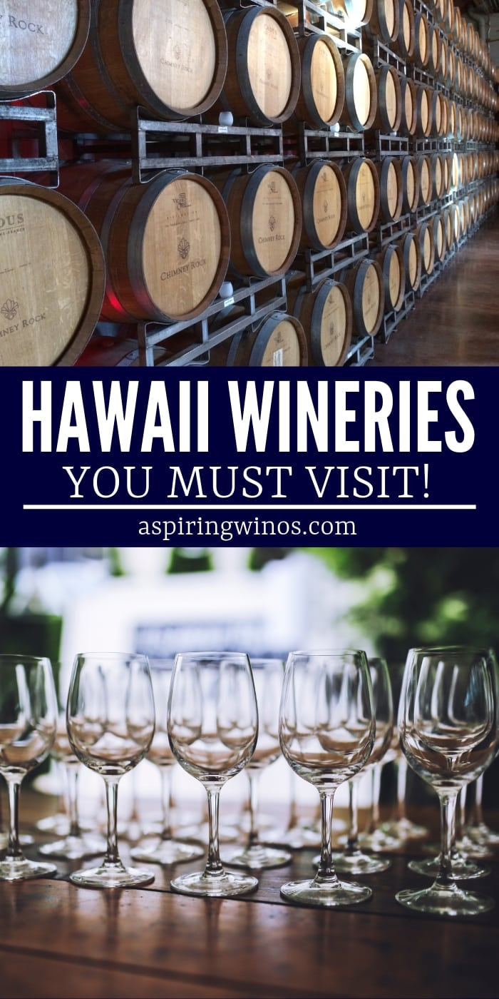 Add these Hawaiian wineries and breweries to your travel bucket list! These #wineries to visit in #hawaii will spice up your trip and you'll learn all about viticulture on the islands, and the creative ways they have to grow grapes. Go #winetasting and enjoy the huge variety of hybrids, traditional and fruit wines, while you vacation in the sunshine. You'll be able to wear an amazing outfit, given the climate, too! #maui #aloha