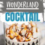 Winter Wonderland Cocktail | Winter Themed Cocktails | Rum Cocktails | Christmas Cocktails | Cocktails to Serve Outdoors | Warming Cocktails | #recipe #cocktails #recipe #rumcocktail #booze #christmascocktail