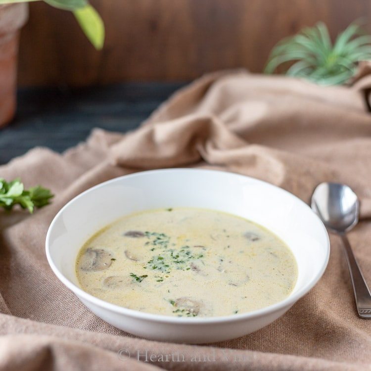 Mushroom Dishes to Pair with Pinot Noir - Cream of Mushroom Soup