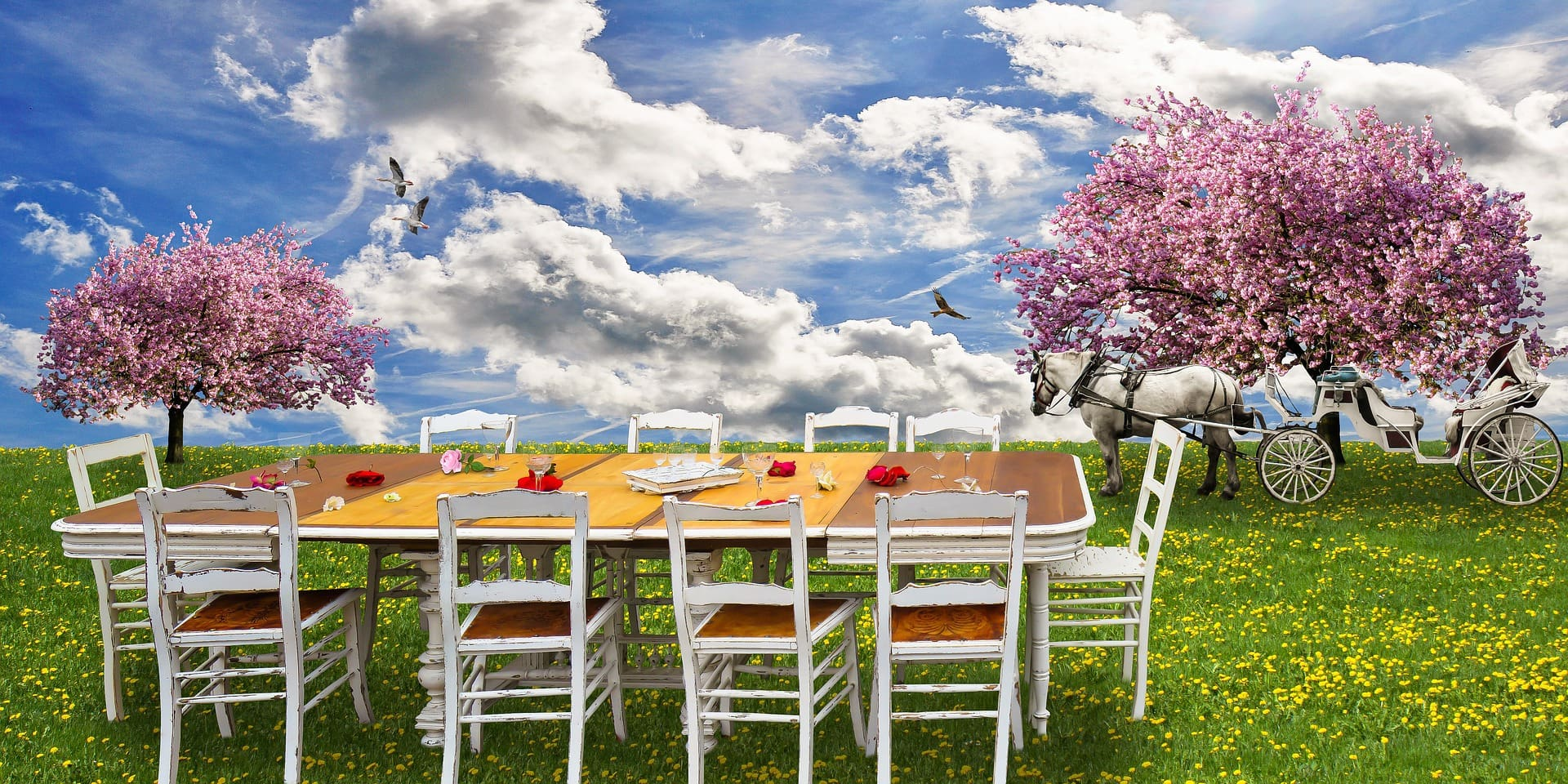 ThePicNicTable