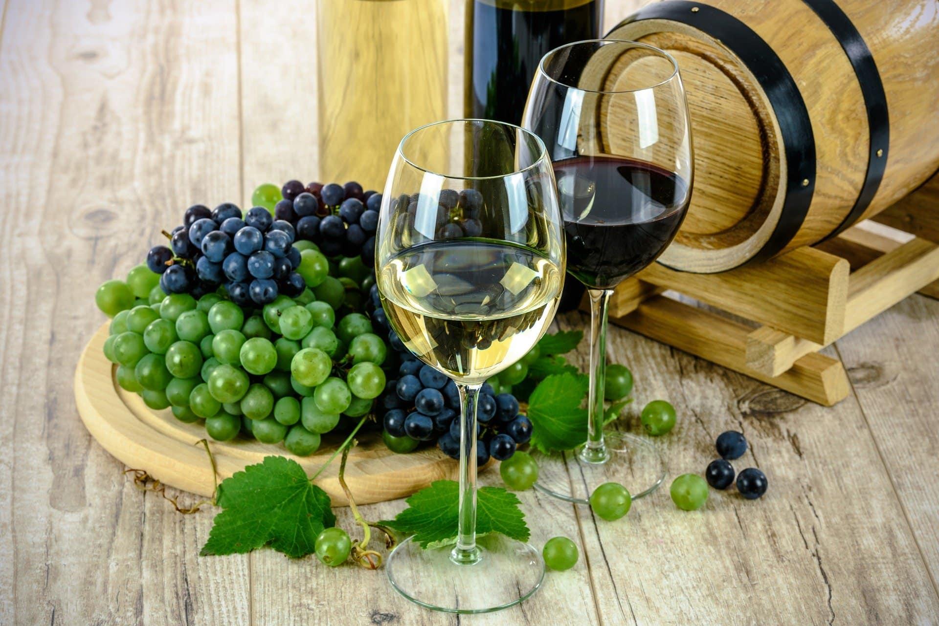 Body of the wine